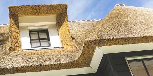 Een rieten dak als dakbedekking