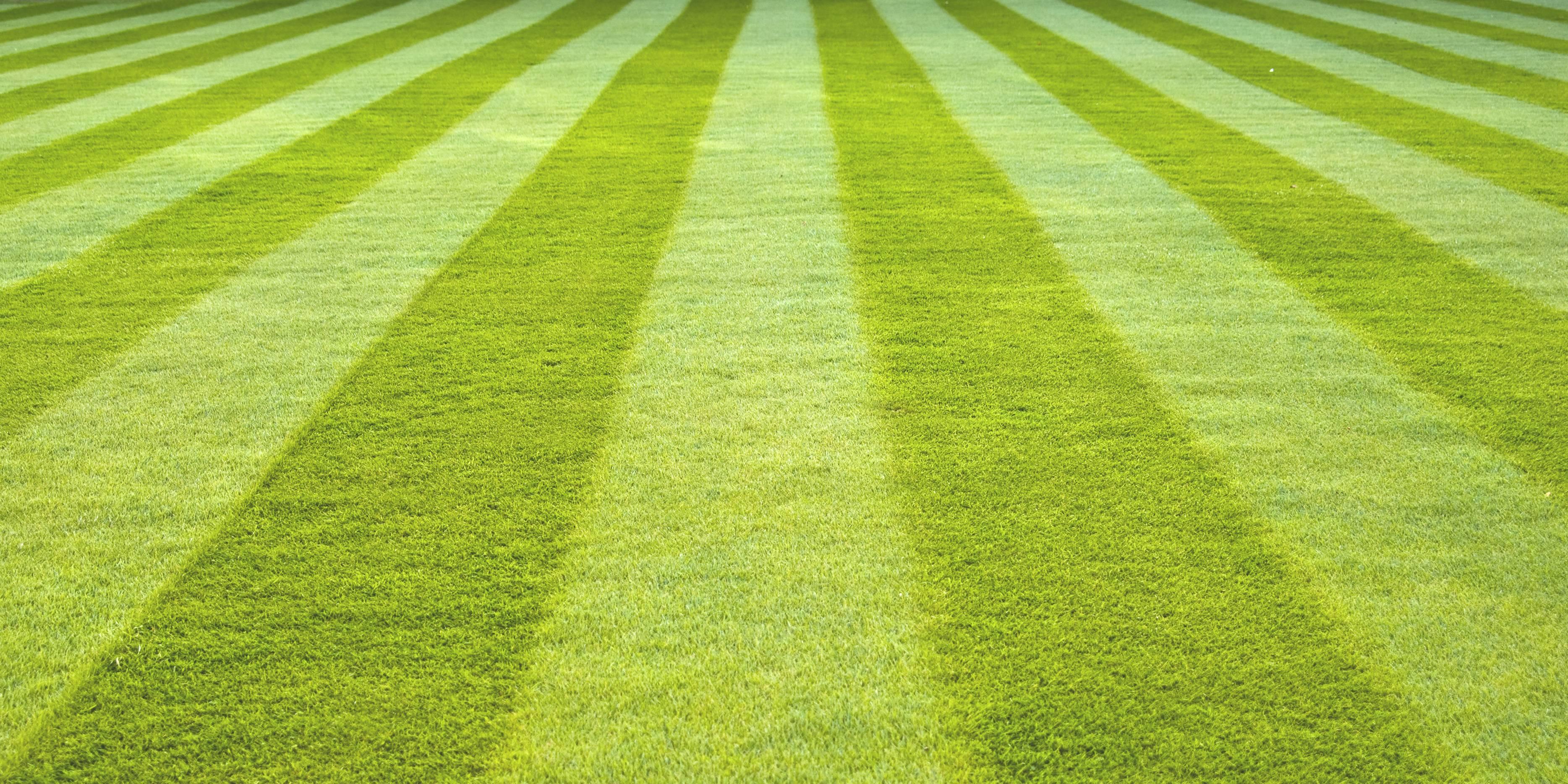 waarom kiezen voor grasmatten